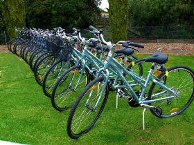 Barossa Bike  - Accommodation BNB