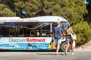 Rottnest Island Tour from Perth or Fremantle including Bus Tour - Accommodation BNB
