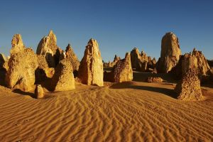 Pinnacles Day Trip from Perth Including Yanchep National Park - Accommodation BNB