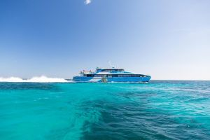 Fremantle to Rottnest Island Roundtrip Ferry Ticket - Accommodation BNB