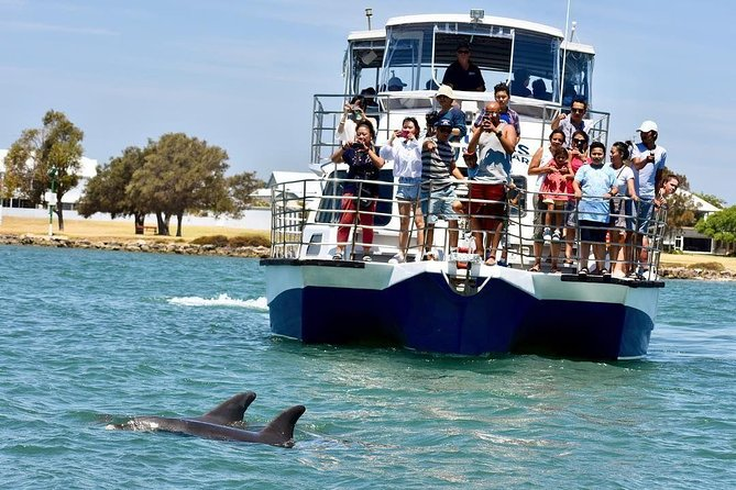Mandurah Dolphin and Scenic Canal Cruise - Accommodation BNB