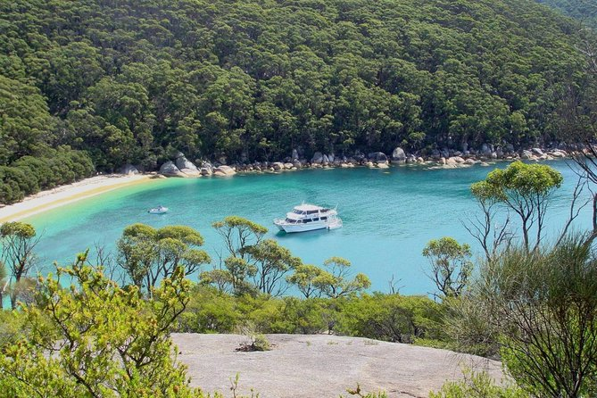 Wilsons Promontory Full Day Cruise - Accommodation BNB