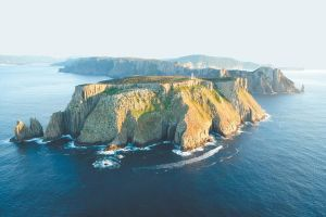 3-Hour Tasman Peninsula Wilderness Cruise from Port Arthur - Accommodation BNB