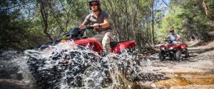 Quad Bike 2-Hour Adventure Freycinet National Park - Accommodation BNB