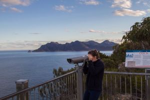 4x4 and Lunch Half Day Freycinet National Park - Accommodation BNB