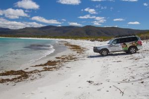 4X4 and Lunch Half Day Bicheno Coastal Mountain - Accommodation BNB