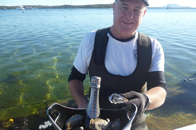 Coffin Bay Oyster Farm  Tasting Tour - Accommodation BNB