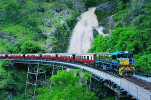 Full-Day Tour with Kuranda Scenic Railway Skyrail Rainforest Cableway and Hartley's Crocodile Adventures from Cairns - Accommodation BNB