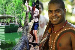 Hartley's Crocodile Adventures and Tjapukai Cultural Park Day Trip from Cairns - Accommodation BNB