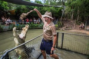 Hartley's Crocodile Adventures Day Trip from Cairns - Accommodation BNB