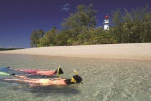 Wavedancer Low Isles Great Barrier Reef Sailing Cruise from Palm Cove - Accommodation BNB