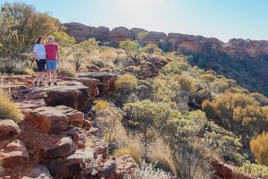 Kings Canyon Day Trip from Ayers Rock - Accommodation BNB
