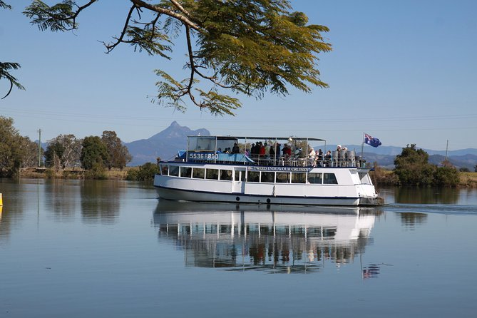 Tweed River and Rainforest Eco Cruise - Accommodation BNB