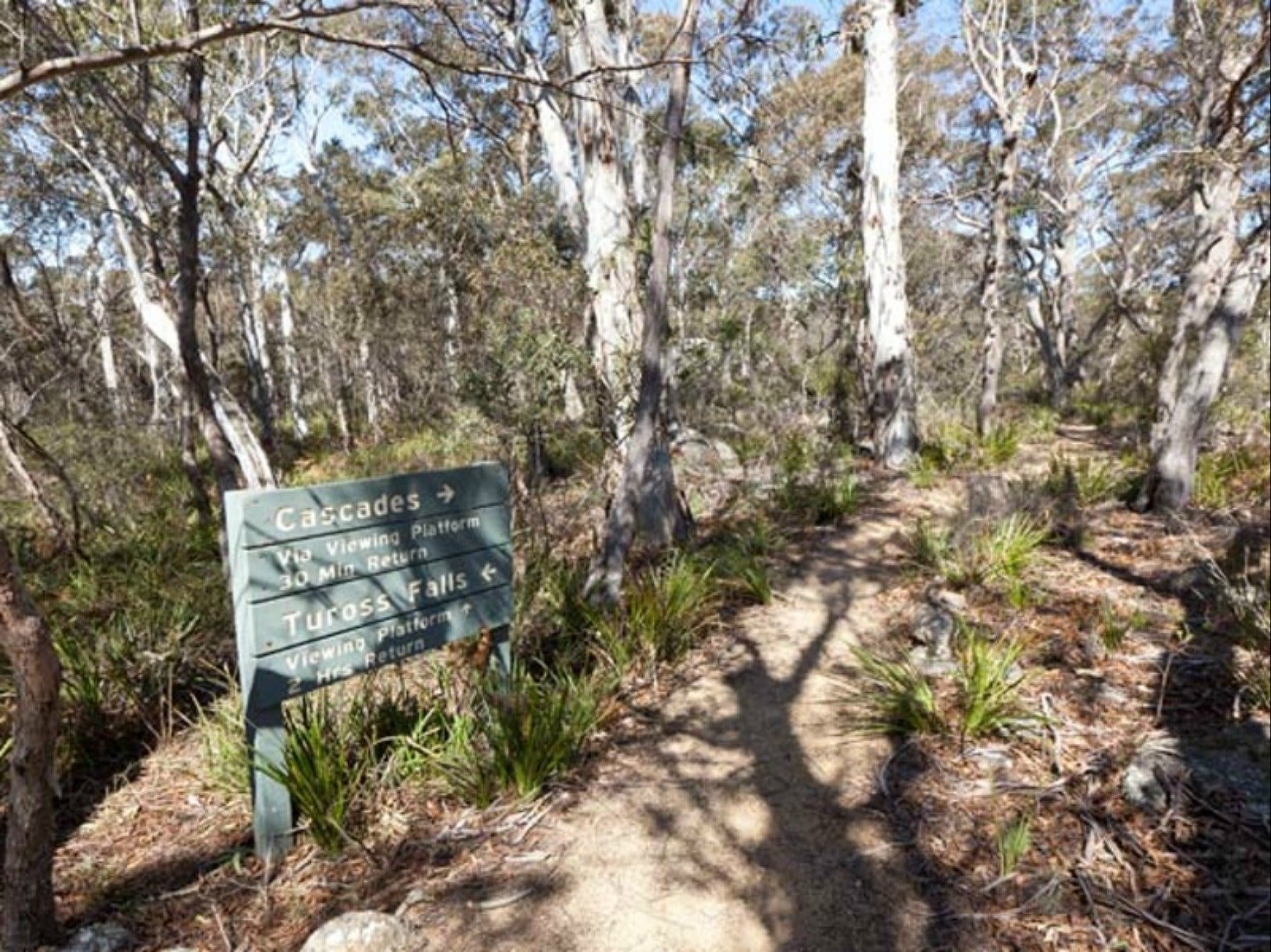 Cascades walking track and viewing platform - Accommodation BNB