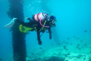 Shellharbour Scuba  and Photography Centre - Accommodation BNB