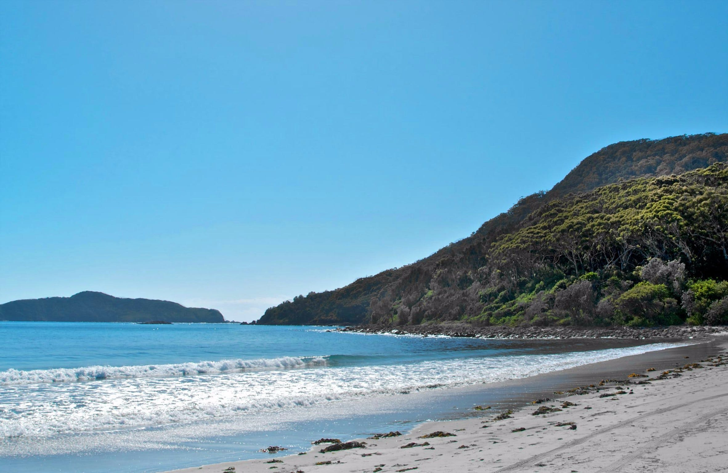Yacaaba Headland Walking Track - Accommodation BNB