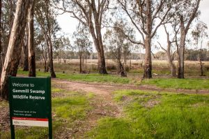 Gemmill Swamp Wildlife Reserve - Accommodation BNB