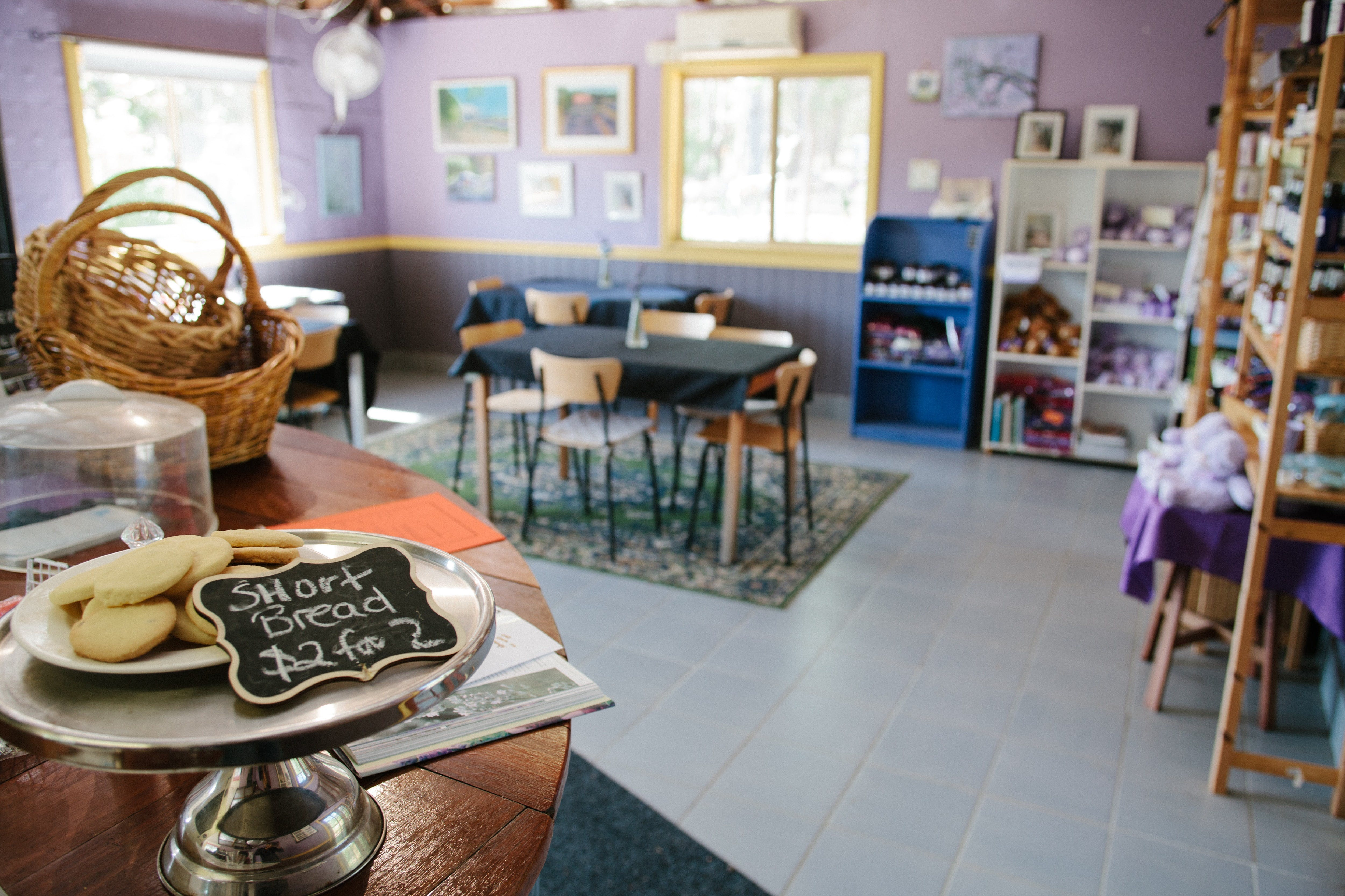 Nannup Lavender Farm - Accommodation BNB