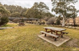 Thredbo River picnic area - Accommodation BNB