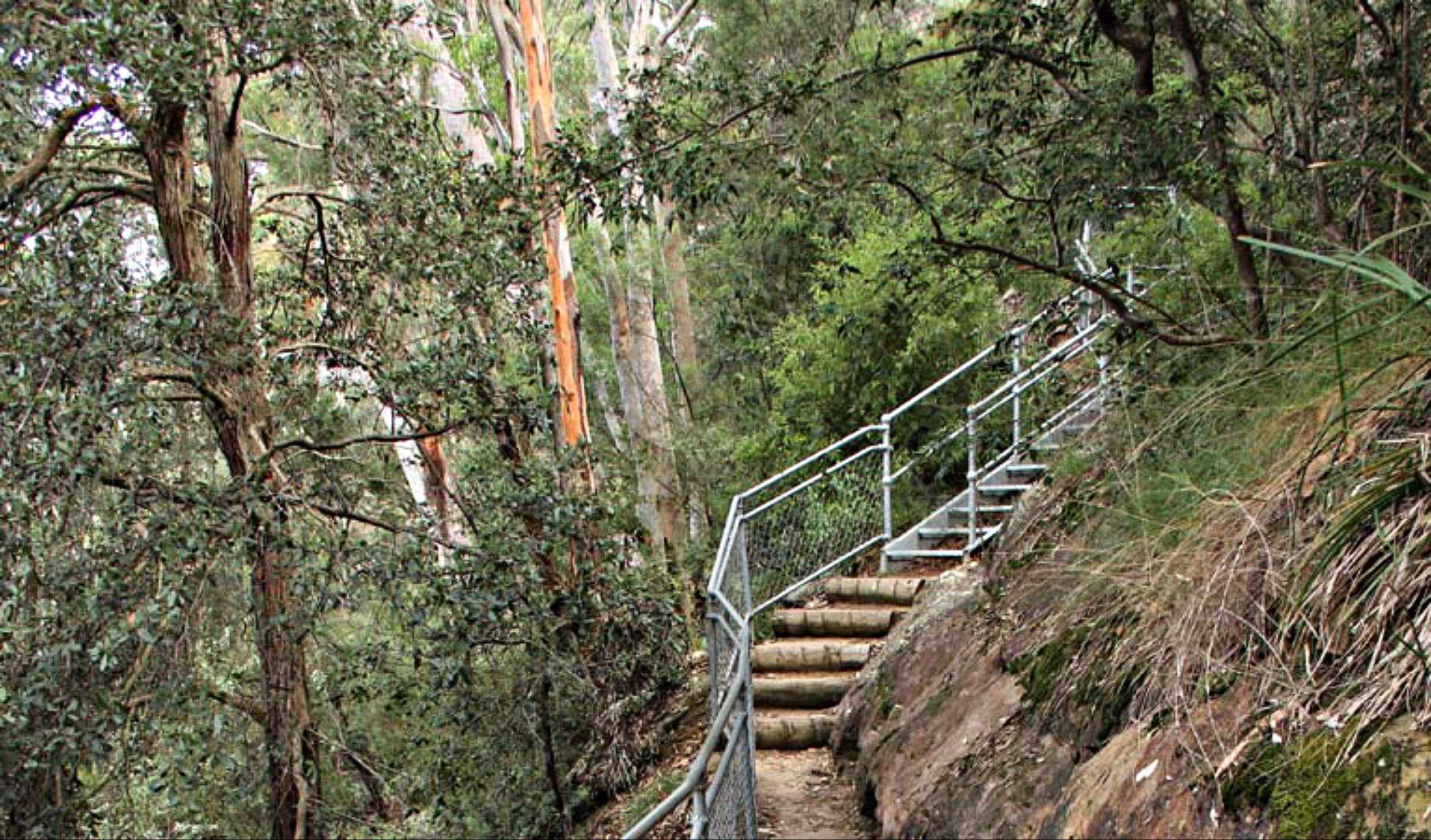 Caleys Lookout Track - Accommodation BNB