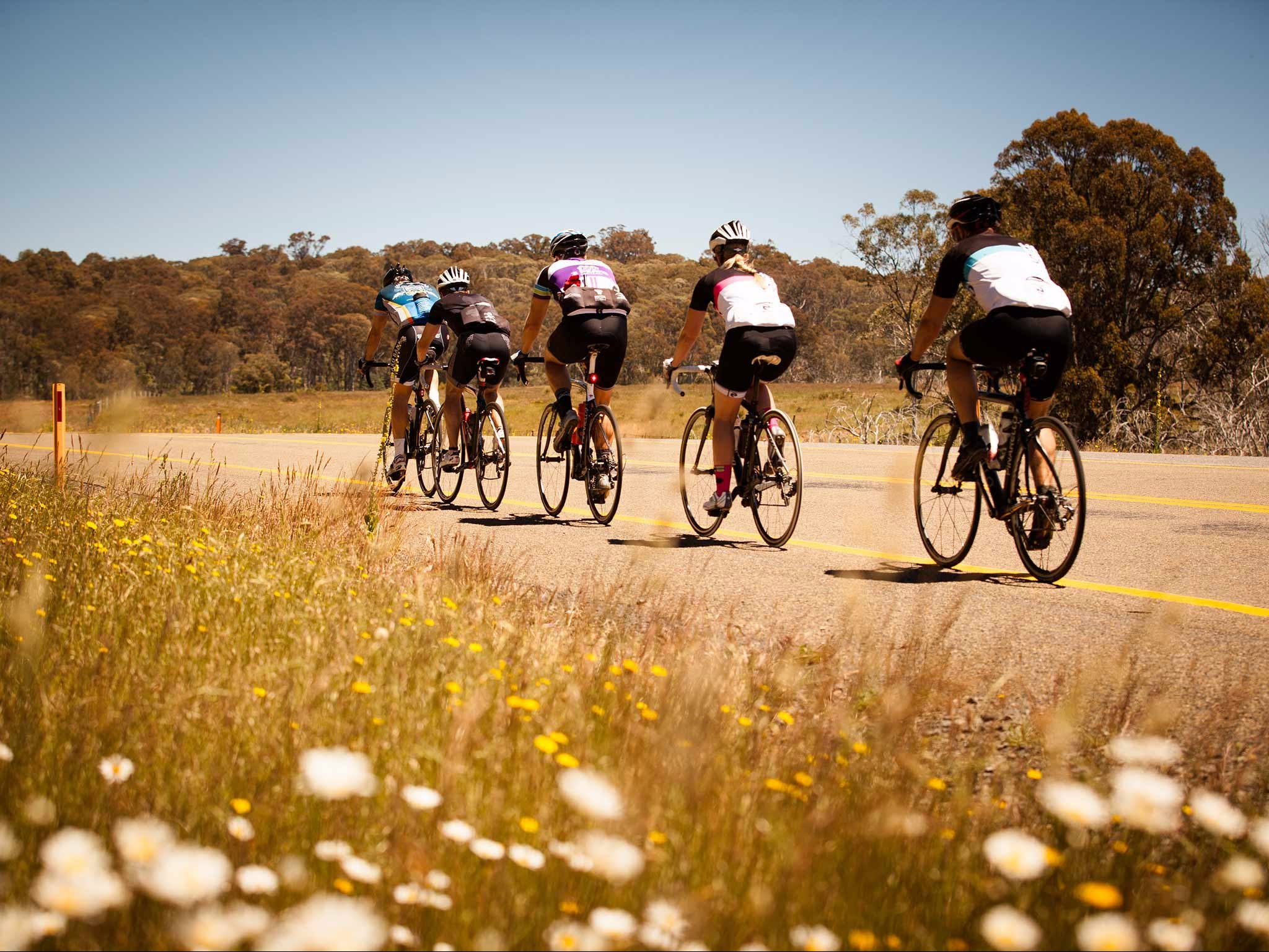 7 Peaks Ride - Dinner Plain - Accommodation BNB