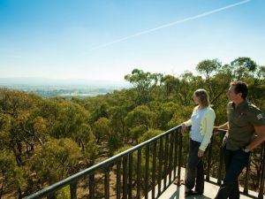 Monument Hill Reserve - Accommodation BNB