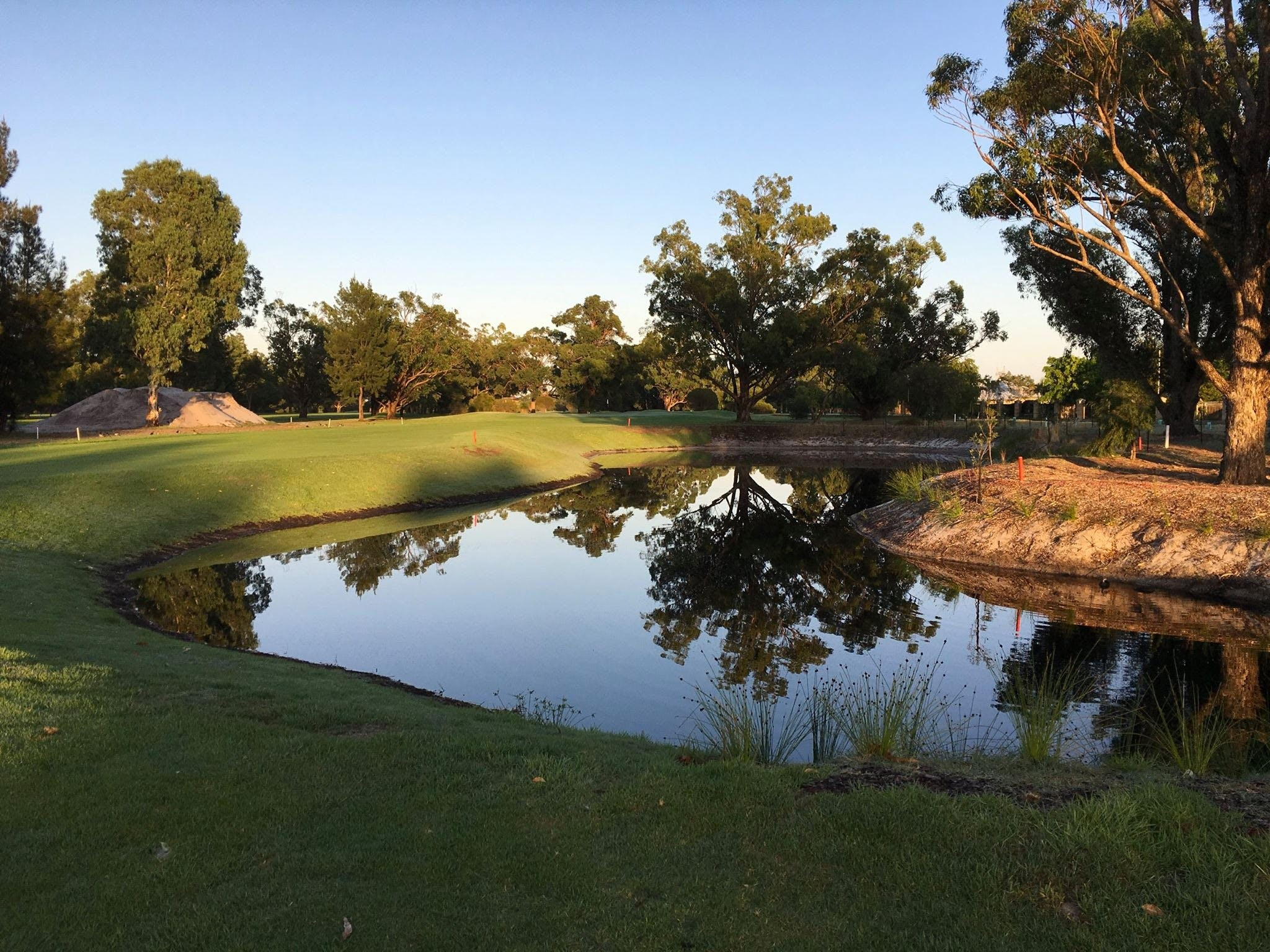 Pinjarra Golf Club - Accommodation BNB