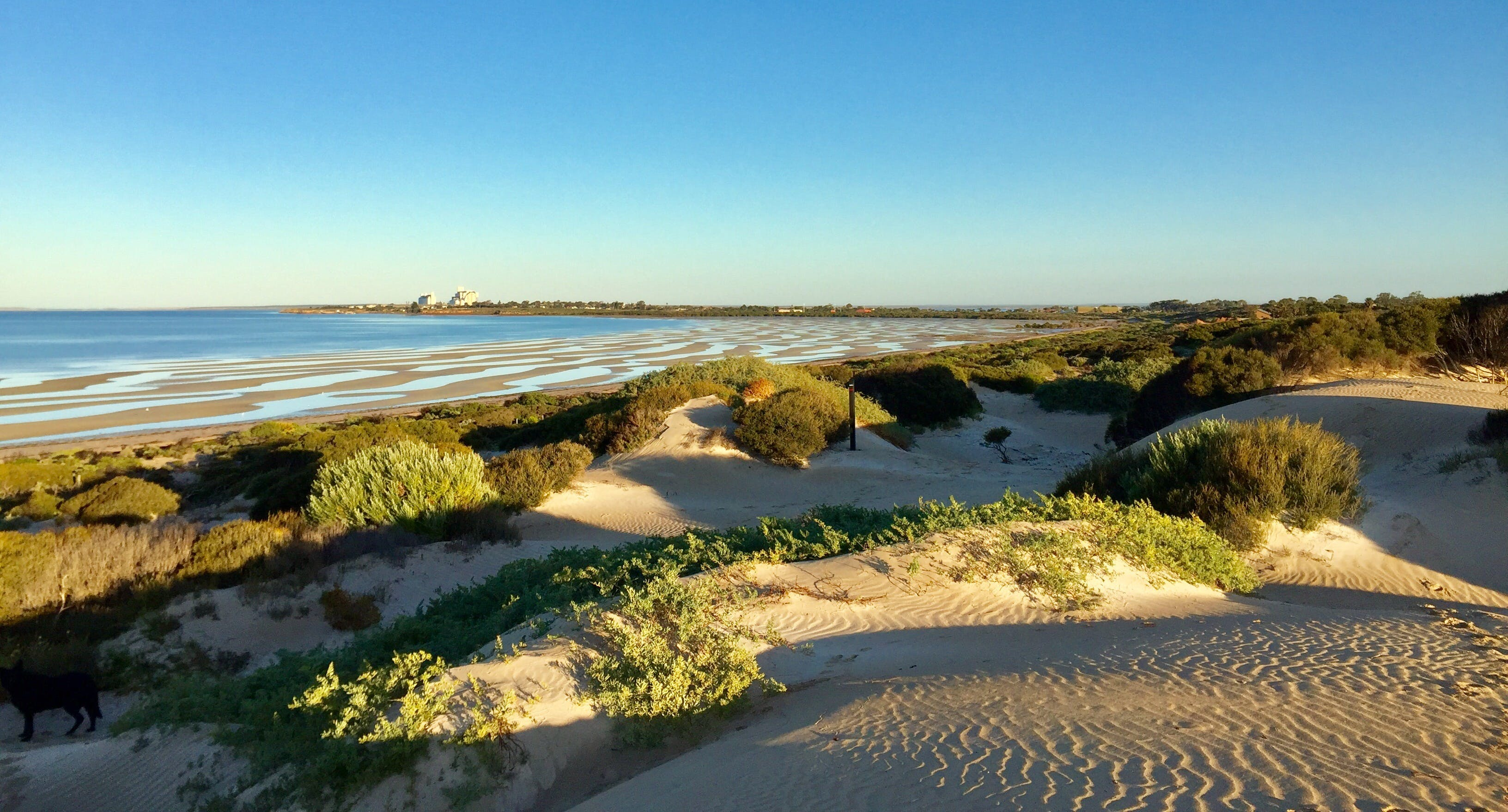 Shelly Beach Dune Walk Trail - Accommodation BNB