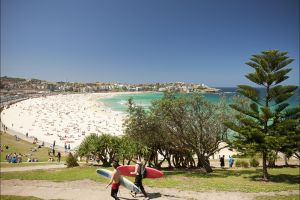 Bondi to Coogee Coastal Walk - Accommodation BNB