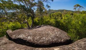 Marramarra Ridge to Smugglers Ridge walking track - Accommodation BNB