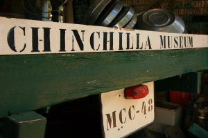 Chinchilla Historical Museum - Accommodation BNB