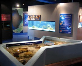 Marine and Freshwater Discovery Centre - Accommodation BNB