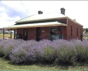 Lavender House in Railway Park - Accommodation BNB