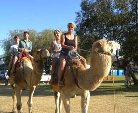 Calamunnda Camel Farm - Accommodation BNB