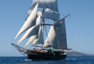 Australian Tallship Cruises - Accommodation BNB