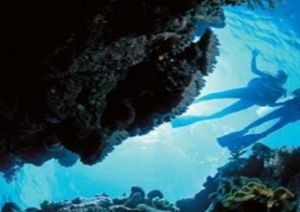 Deep Sea Divers Den - Accommodation BNB