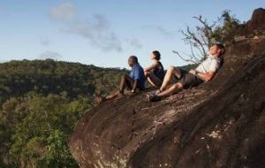 Cooktown Aboriginal Art Tours - Accommodation BNB