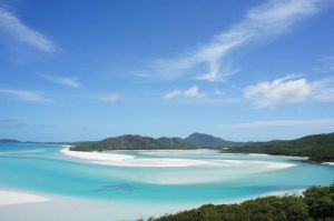 Whitsunday Dive Adventures - Accommodation BNB
