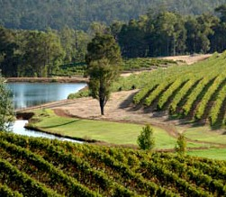 Brookhampton Estate Vineyard - Accommodation BNB