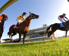 Wyong Race Club - Accommodation BNB