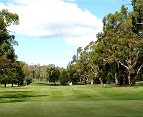 Cooma Golf Club - Accommodation BNB