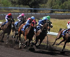Alice Springs Turf Club - Accommodation BNB