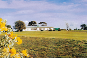 Lucindale Country Club - Accommodation BNB