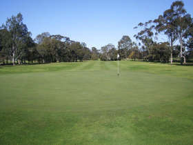 Maffra Golf Club - Accommodation BNB