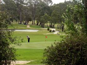 Mount Barker-Hahndorf Golf Club - Accommodation BNB