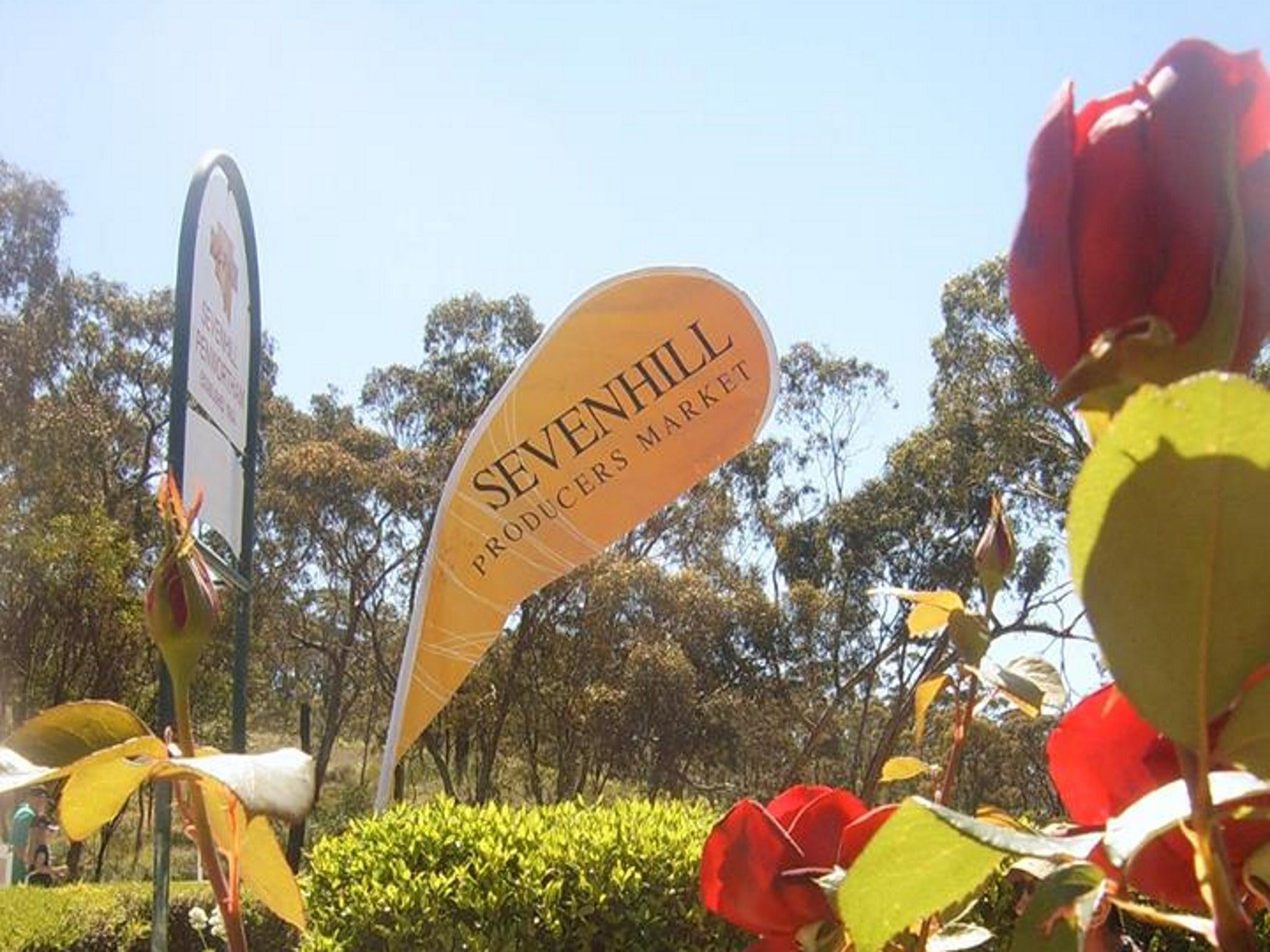 Sevenhill Producers Market - Accommodation BNB