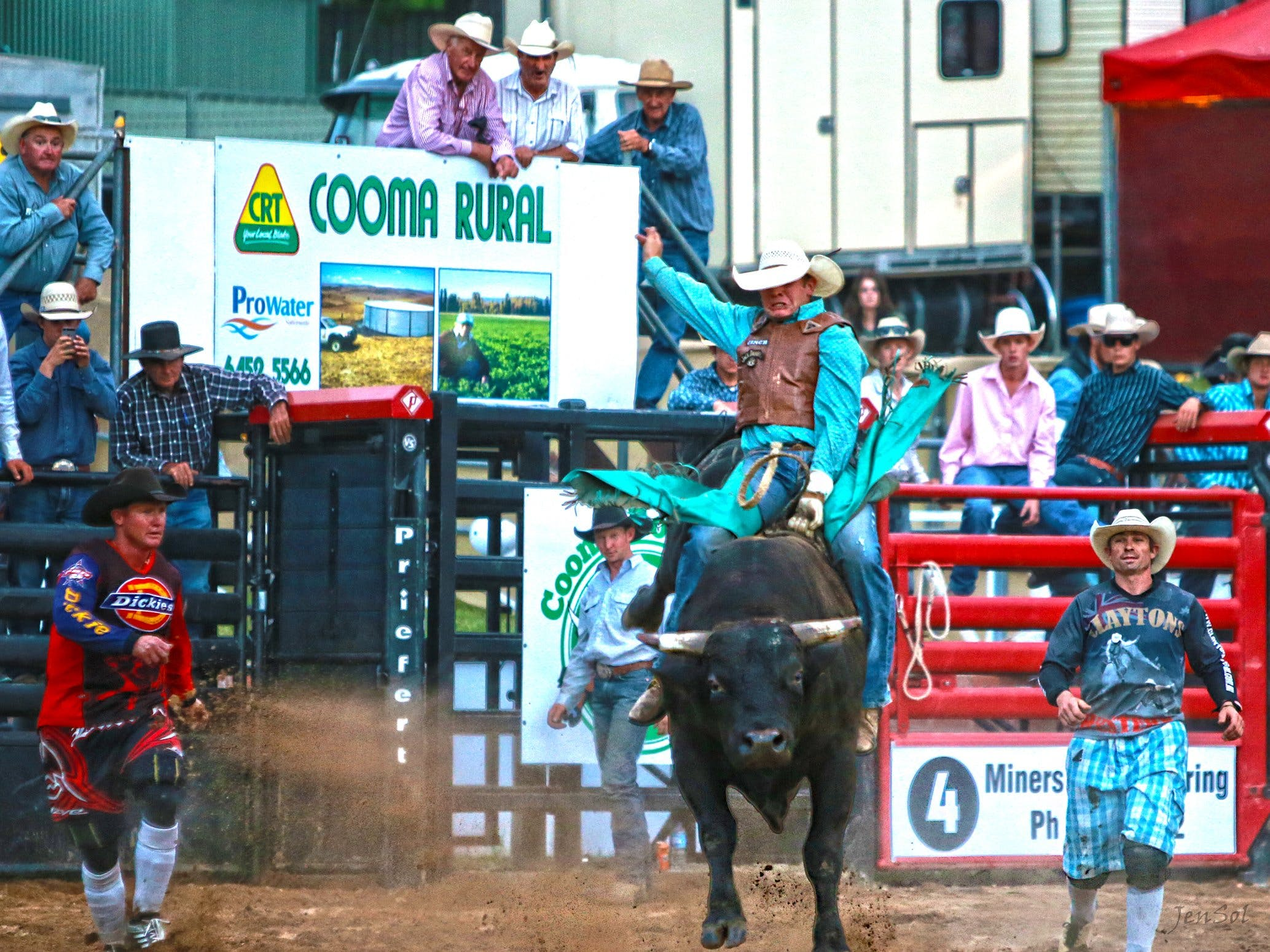AgriWest Cooma Rodeo - Accommodation BNB
