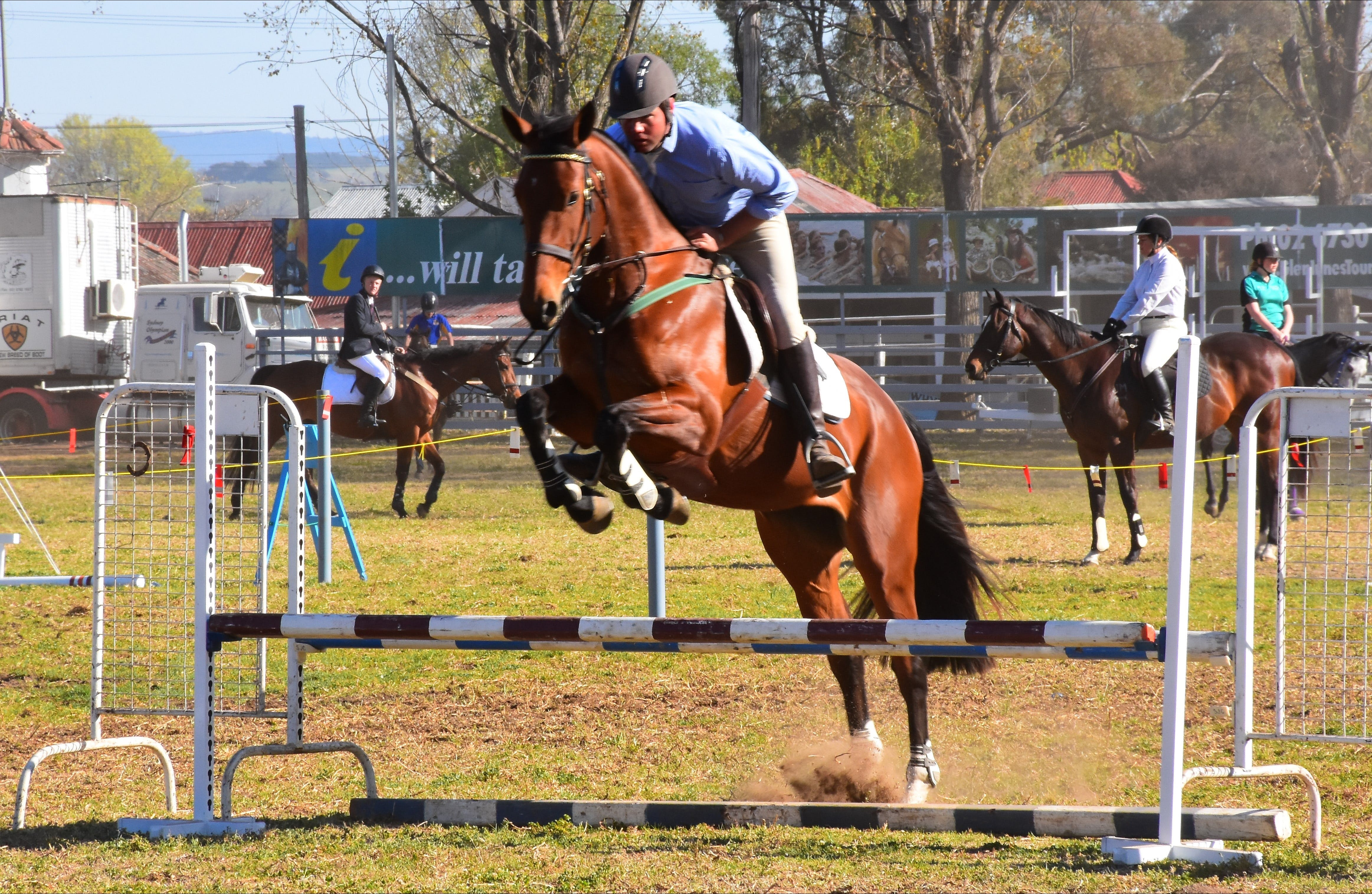 Glen Innes Pastoral and Agricultural Show - Accommodation BNB