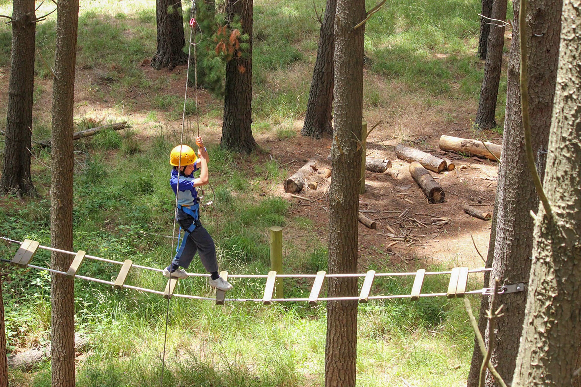 July 2020 Holidays- Go Wild at the Mt Lofty Adventure Hub - Accommodation BNB