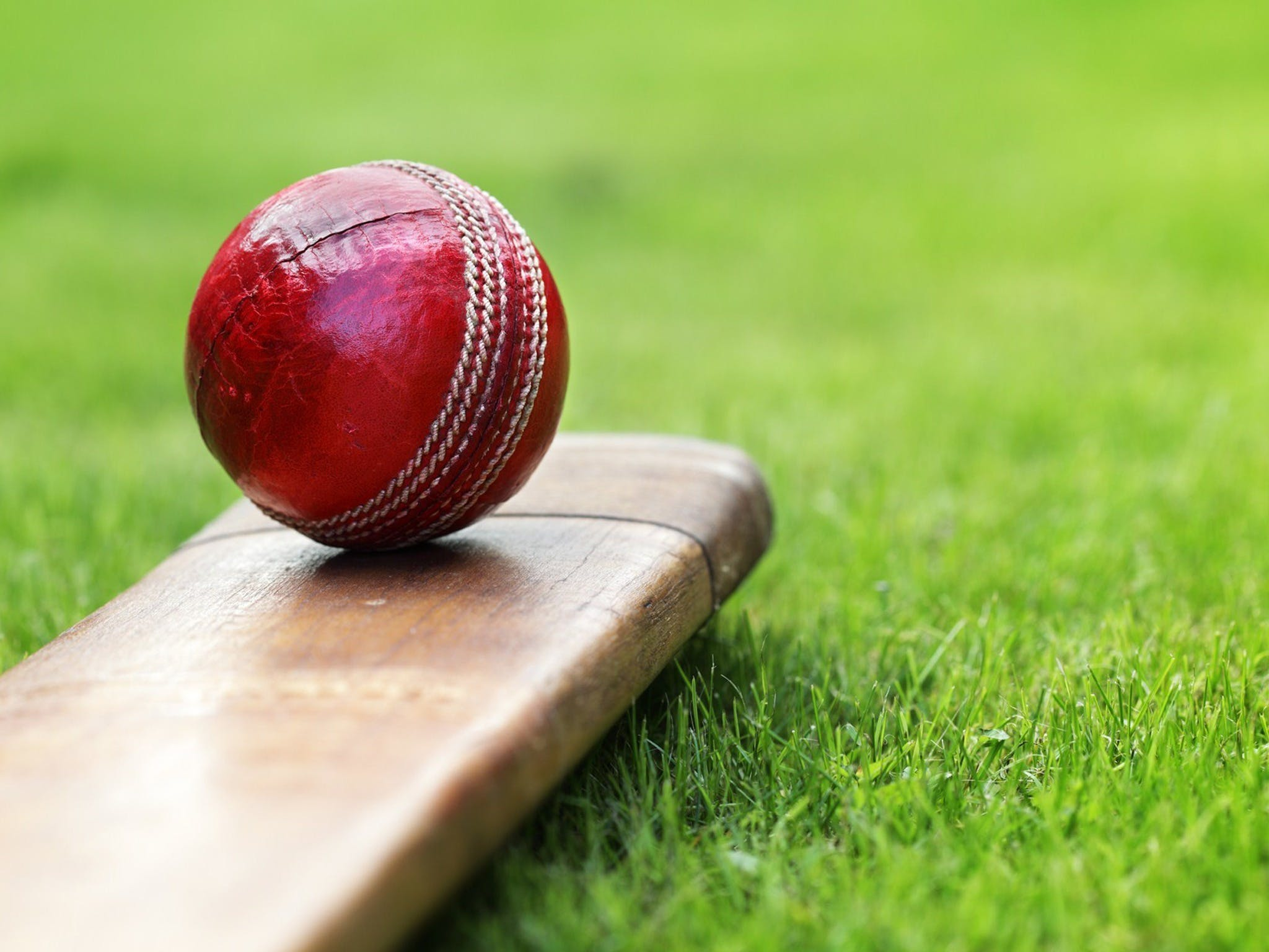 Under 13 14 15 Cricket Youth Championships - Accommodation BNB